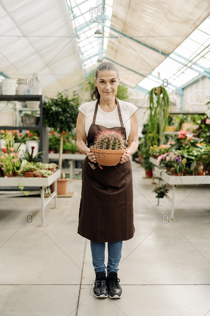 Beautiful middle aged woman working in plant nursery holding a cactus.