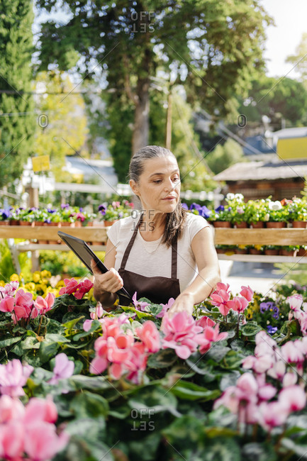 Beautiful middle aged woman working in plant nursery and using tablet.