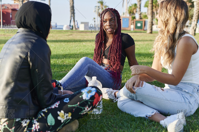 Diverse group of smiling young female friends talking together while sitting in a park on a sunny afternoon