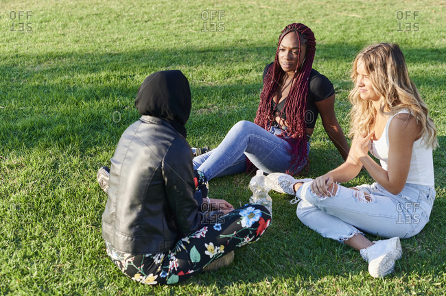 Diverse group of young female friends talking together while sitting in a park on a sunny afternoon