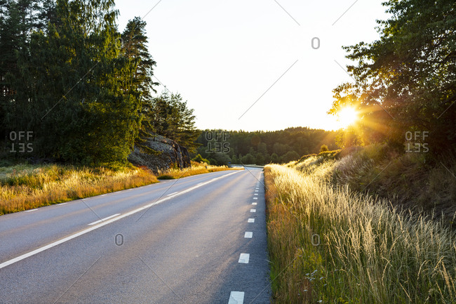 Country road at sunset. Detailed shot.