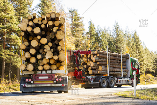 Lorries loaded with logs. Detailed shot.
