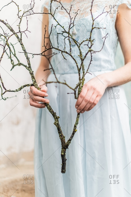 Girl in a blue chiffon lace dress holding dead tree branch with moss