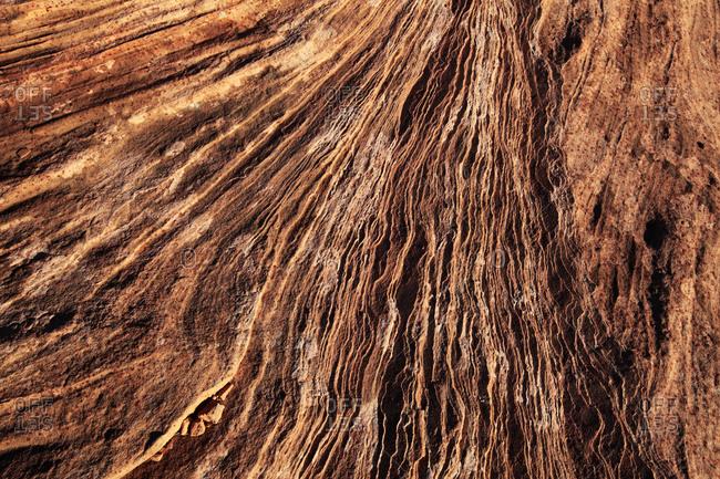 Grand Canyon's Horse Shoe Bend
