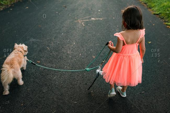 Little girl in orange dress walks dog from behind