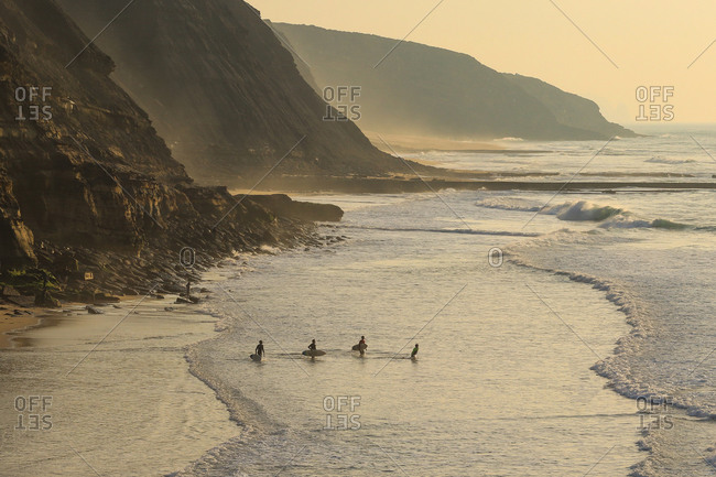 Group of surfers going to surf in the ocean at the sunset.