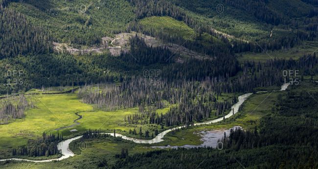 Curvy river flowing near forest in green valley near mountain slope in highlands of British Columbia, Canada