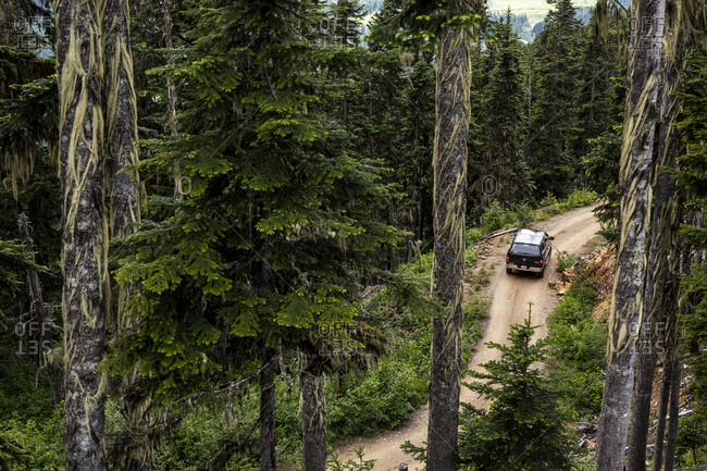 Canada, British Columbia, Pemberton - June 28, 2020: Drone view of modern vehicle driving along road near coniferous trees during trip through green forest