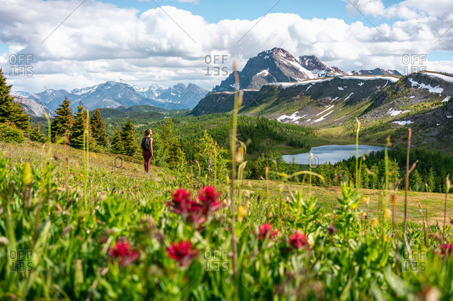 Hiking Healey Pass in Banff National Park During Spring