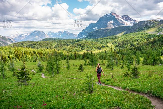 Hiker Walking Through Healey Pass in Banff National Park