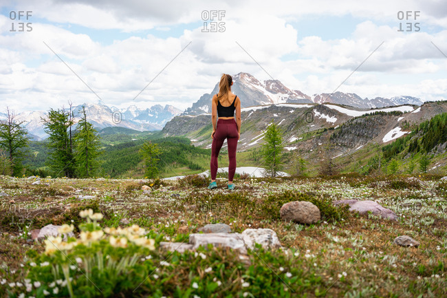 Looking Out Towards Sunshine Meadows and Healey Pass in Banff