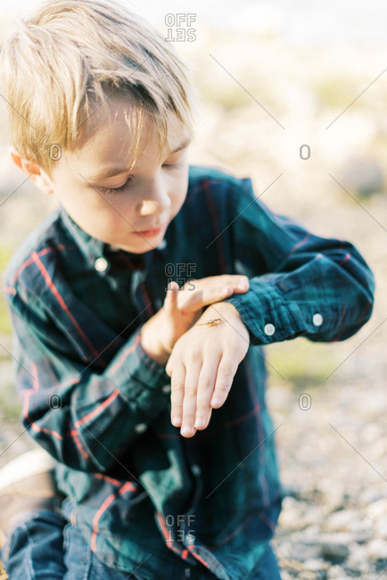 A five year old boy playing with insects by the lake
