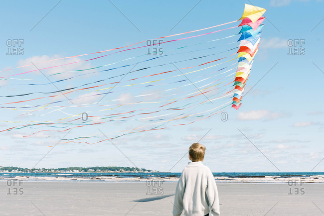 A boy admiring a large kite flying past him on a New England beach
