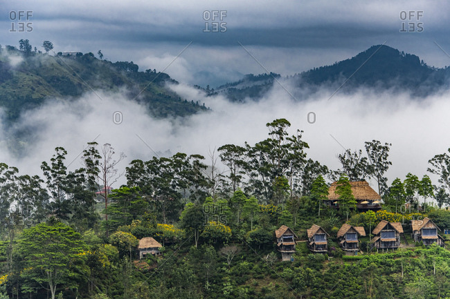 Houses of a tea lodge above Ella in Sri Lanka