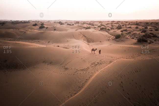 Aerial View Of Person Walking A Camel Across The Dry Sand Dunes Of The Great Indian Desert At Sunset, Rajasthan, India