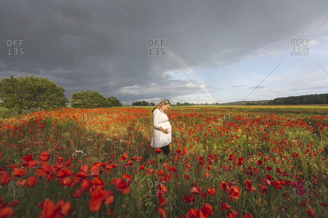 Pregnant woman with hands on stomach standing in poppies field against cloudy sky