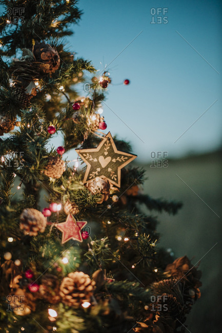 Close-up of illuminated Christmas tree against clear sky at dusk