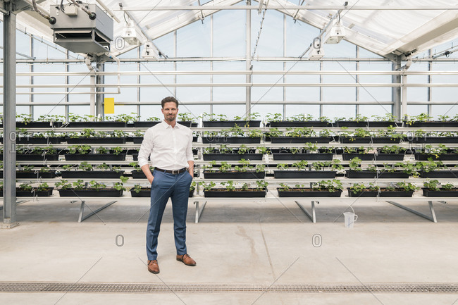 Businessman standing against potted plants in greenhouse
