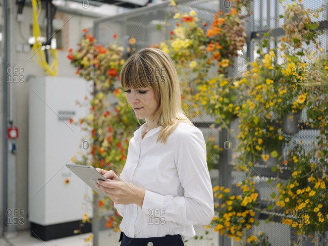 Businesswoman with blond hair using digital tablet while standing against flowers in greenhouse