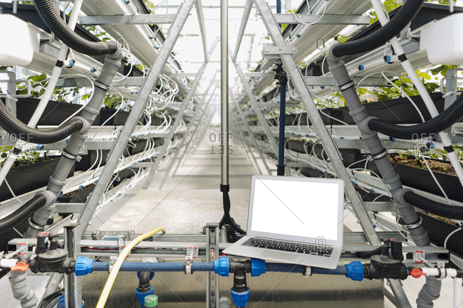 Laptop on irrigation equipment against plants in greenhouse
