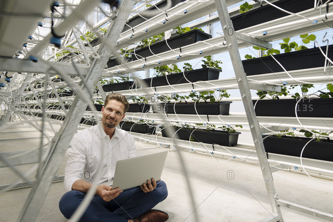 Male entrepreneur using laptop while sitting amidst plants in greenhouse