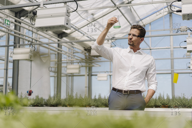Male scientist holding conical flask while standing in greenhouse