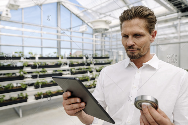 Close-up of businessman holding work tool using digital tablet in greenhouse