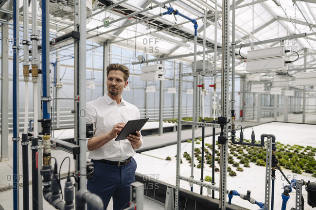 Male professional with digital tablet examining irrigation equipment in greenhouse