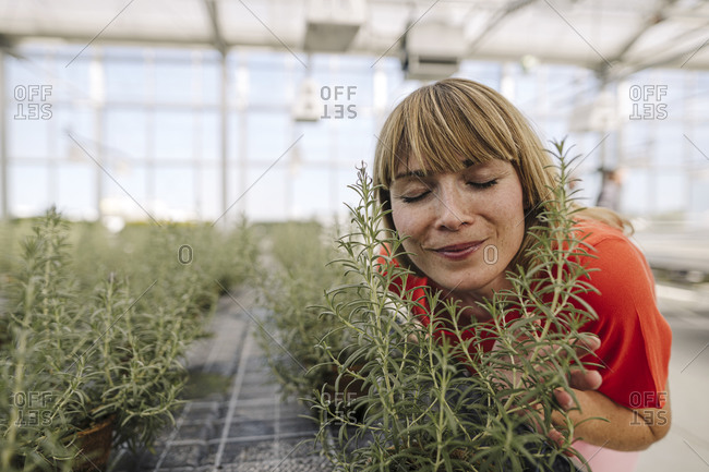 Close-up of female entrepreneur with eyes closed smelling plants in greenhouse