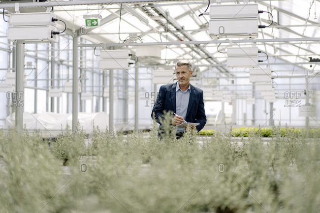 Male professional with digital tablet examining plants growing in greenhouse