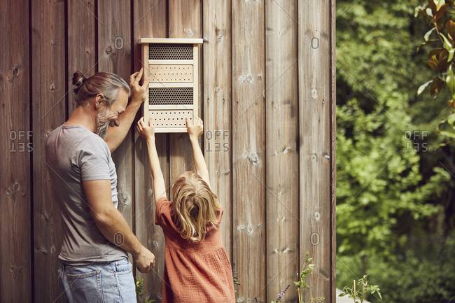 Father and daughter hanging insect hotel on wall