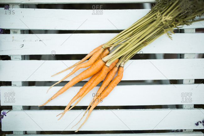 A bunch of carrots on a white wood bench
