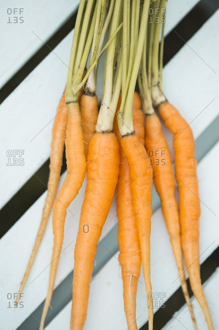 Close up of a bunch of carrots on a white wood bench