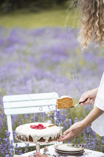 Woman serving a slice of carrot cake on a table in a lavender field