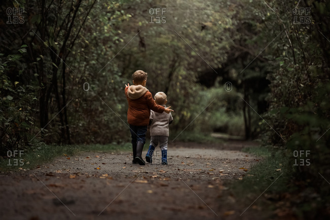Rear view of two little blonde boys walking on a path