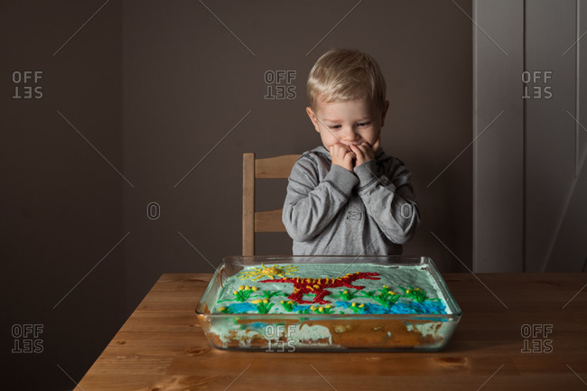 Excited little boy looking down at his homemade dinosaur cake