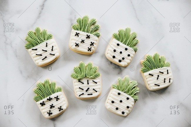 Plant themed sugar cookies with icing on a marble surface