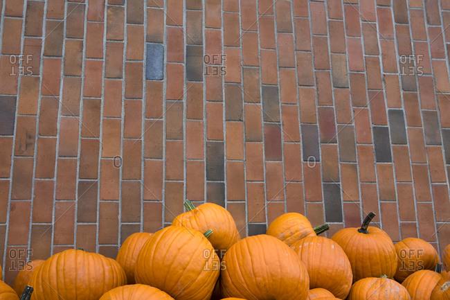 A heap of yellow and orange pumpkins, brick wall