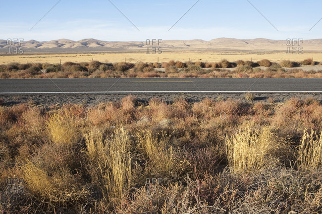 Highway through flat open space, desert with scrub plants