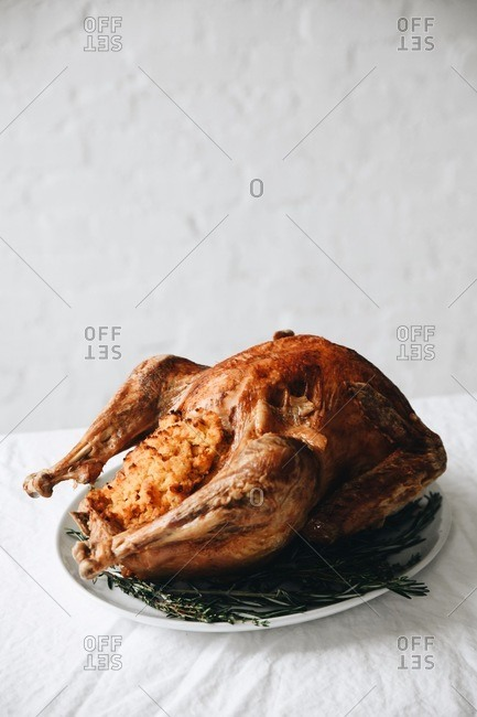 Golden roasted and stuffed turkey for Thanksgiving dinner