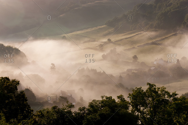 Morning mist over a valley, fields and trees in winter