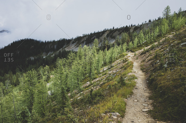 View of the Pacific Crest Trail along remote alpine meadow, autumn