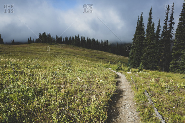 View of the Pacific Crest Trail path in remote alpine meadow, autumn