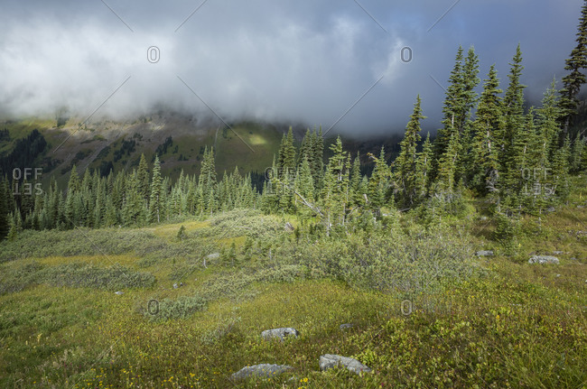 Storm clouds lifting over remote mountain range and alpine meadow, along the Pacific Crest Trail