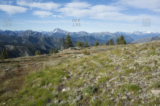 The North Cascade Range, view from the Pacific Crest Trail