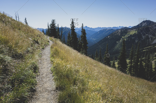 Path and alpine meadows of the Pacific Crest Trail