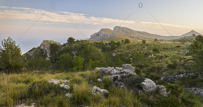 Puig de sa Creu, Parc natural de la peninsula de Llevant, Mallorca, Balearic Islands, Spain