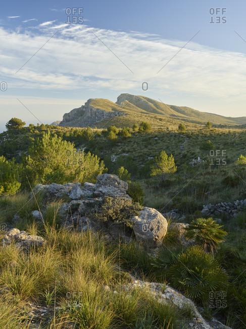 Puig de sa Creu, Talaia Freda, Parc natural de la peninsula de Llevant, Mallorca, Balearic Islands, Spain