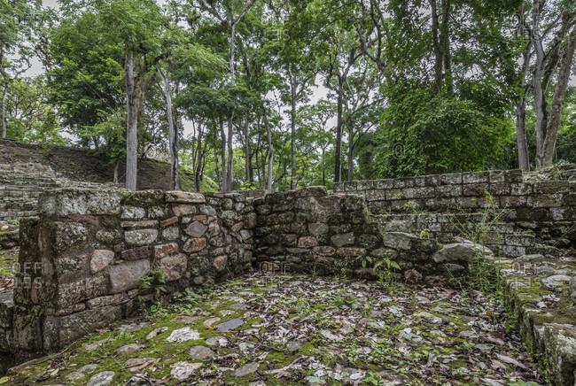 Central America, Honduras, Copan Ruins, Maya