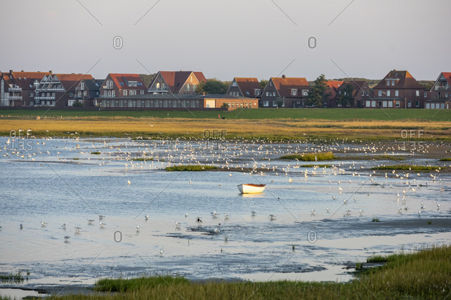 Germany, Lower Saxony, East Frisia, Juist, the Wadden Sea at Billstrasse.